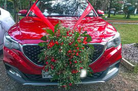 Mg ZS 2018 (Turbo) RED for SALE