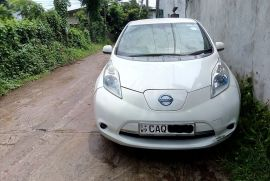 Nissan Leaf 2013 AZEO Model